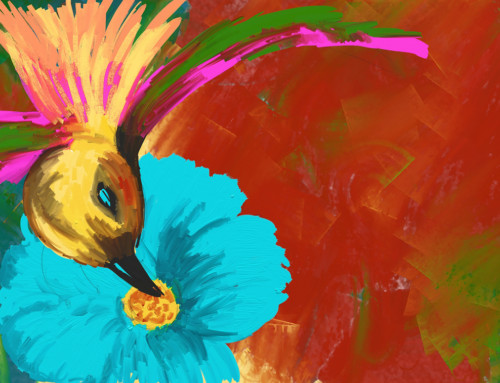 Hummingbird to Heart – The Journey to Joy