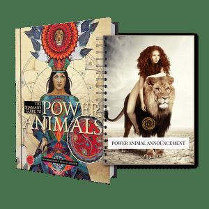 Lori Morrison - Power Animals Book & Report Bundle