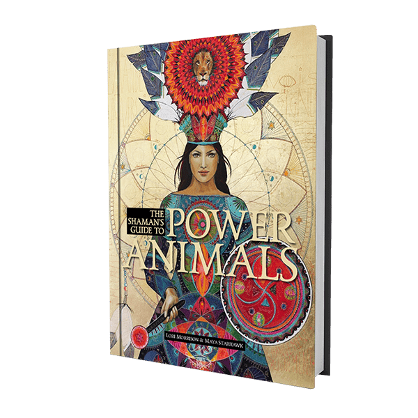 Lori Morrison - Power Animals